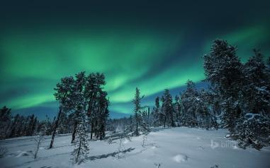 2014-01-22_ROW11451542138_Northern-Lights-over-Yellowknife-Northwest-Territories-Canada