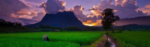 Chiang Dao vista