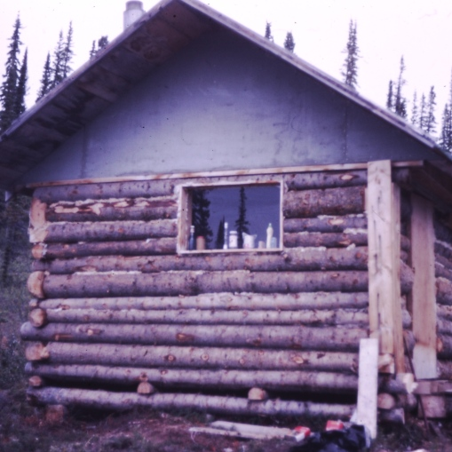 simple log cabin
