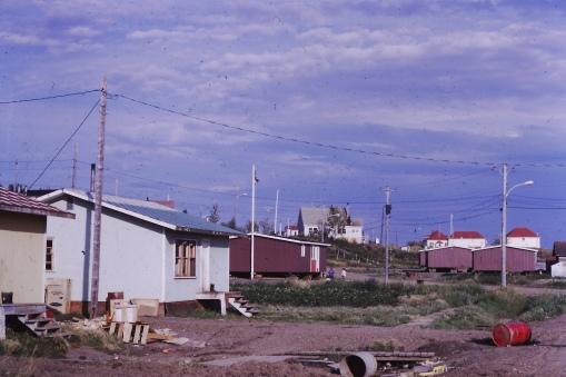 Village in the summer