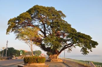 Mekong views
