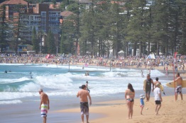 Sydney beaches - Manly