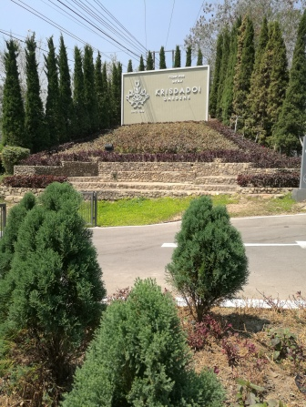 Krisdadoi Entry
