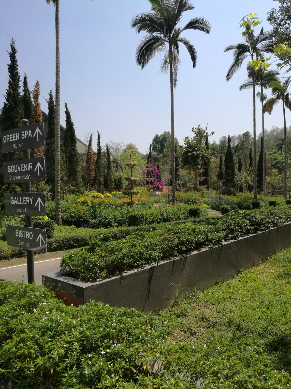 greenery