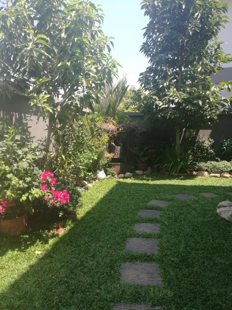 Villa garden today