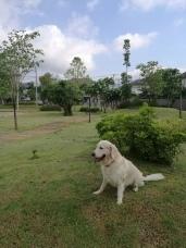 Enjoying the park