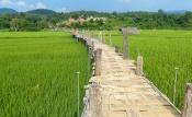 Bamboo bridge Su Tong Pae