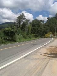 The road scene