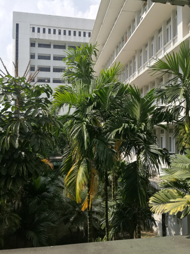 or Suan Dok Hospital