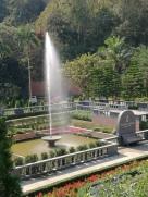 Flora Creek