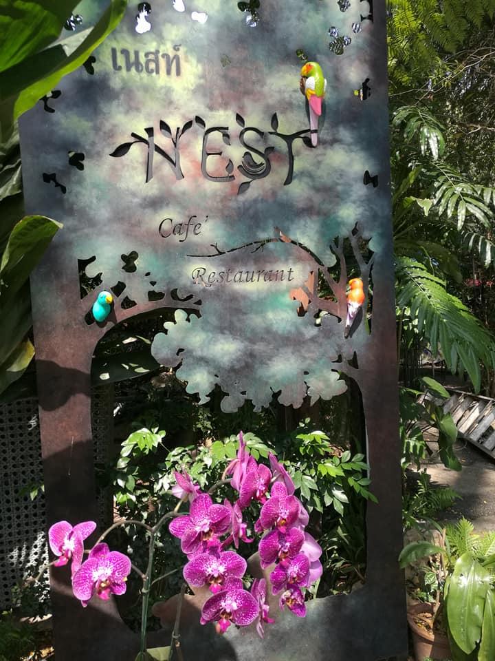 The Nest -